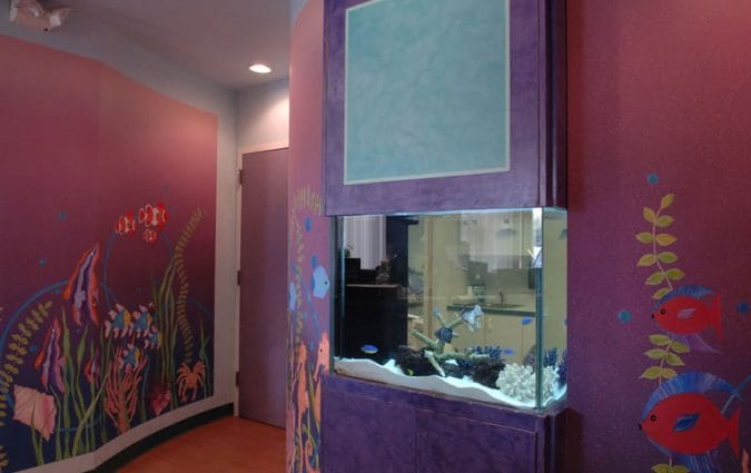 Woodbury Pediatric Dentistry Orthodontics Office Picture - Fish Tank